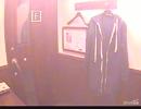 【うたスキ動画】首なし閑古鳥/米津玄師【歌ってみた】