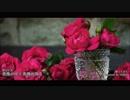 【歌ってみた】 愛内里菜 / 薔薇が咲く薔薇が散る 【hidden】