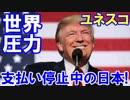 【世界に圧力をかける日本政府】 分担金支払を停止中の日本はどうする!
