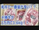 国産牛最大クラス 1万円で十勝牛1.6kg 北海道 幕別町【ふるさと納税】