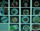 第28位:漫画「深夜食堂 1」に出てくるすべての注文料理を再現してみた thumbnail
