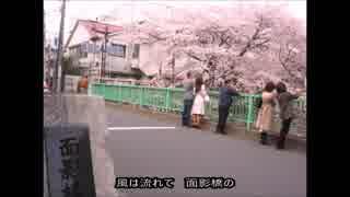 ニャントカマンシリーズ 大義援オモカゲマン