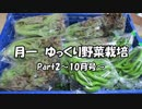 月一 ゆっくり野菜栽培 Part2