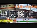 中央桜【千本桜×中央本線(名古屋→東京)】