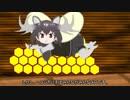 ハチの生態 前篇