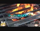 秋刀魚にリベンジ!!~今度こそ上手に焼くよ~ ②