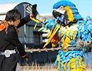 仮面ライダーオーズ/OOO 第26話「アンクとリングと全部のせ」