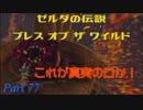 実況とはよべないゲームプレイ【のんびり冒険 ゼルダの伝説BotW】77