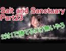 【Salt and Sanctuary】2対1で勝てるわけ無いやろ【実況】Part23