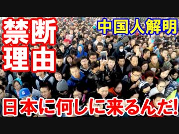 【中国人の訪日理由が解明された】 そのほとんどがなんとあっちに無い!