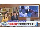 ゆうがたサテライト ミニ 2017/11/21放送分