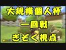 【マリオカート8DX】大規模個人杯1回戦【ぎぞく視点】