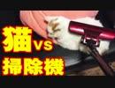 猫vs掃除機!あの猫のように掃除機を舐めるのか!?