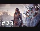 【DLC】Horizon Zero Dawn【凍てついた大地】#23