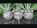 月一 ゆっくり野菜栽培 Part3