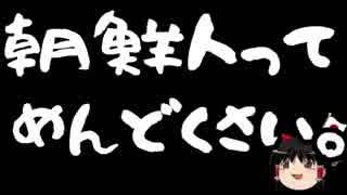 【ゆっくり保守】桜井誠氏敗訴、「朝鮮ババァ」はヘイトスピーチ?