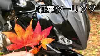 【ゆっくり車載】ご近所3分ツーリング【三段峡】