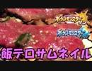 【実況】常夏の島で大冒険 Part50【ポケットモンスターサン】