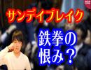 第13位:パンチの恨み?小西議員が佐藤外務副大臣に難癖で罷免要求【サンデイブレイク39】