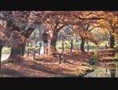 京都府立植物園、秋の景色【高画質テスト】