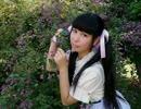 【 桜姫ありす 】 恋愛サーキュレーション 【 踊ってみた 】 thumbnail