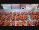 本気農業 「いちご」つくって400万稼ぐ その7.5  特別篇 実況動画