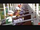 「キタサンブラック」2017 有馬記念 thumbnail