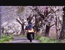 第84位:V-Strom650: Touring memories 2017 thumbnail