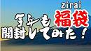 【ゆっくり実況】今年も福袋を開封してみた!!!!!!!!!!!!DS...