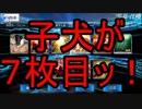 【FGO】弓ギルガメッシュPUガチャる~リベンジ~【マスター1周年記念】