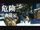 【RPGモンハン】勇者、狩りをする。~危険!雪山遠足編~【複数実況】