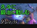 【ネタバレ有り】 ドラクエ11を悠々自適に実況プレイ Part 35
