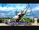 第41位:ひとりでとことこツーリング46-01 ~道の駅くにの松原おおさき など~ thumbnail
