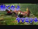 「動きすぎ!タマミツネ」【モンスターハンターXX実況Part63】