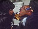 仮面ライダーアマゾン 第20話「モグラ獣