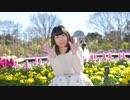 【秋雨】Hand in Hand 踊ってみた【おやすみなさい】