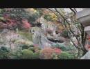 【散策物語】那谷寺を散策 2017Autumn ~石川県小松市~
