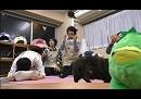 【八代拓さん】白にゃん誕生日SP運勢占い『ねころび男子』25ねころび≪後編≫