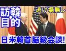 【韓国が安倍首相にこっち来るな】 日本の訪韓目的は日米韓首脳会談!