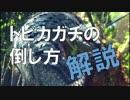 【MHW】トビカガチの倒し方 解説【モンスター攻略】