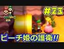 【マリオ&ルイージRPG1 DX】ブラザーアクションRPGを実況プレイ!!【Part23】