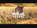 【ゆっくり旅行】MIKIRI TRAVEL - 養老渓谷駅 Part2【たまに生声】
