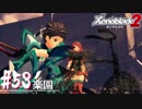 【#53】ニアたんと楽園を目指す実況-楽園-【ゼノブレイド2】