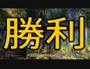 ソードアート・オンラインーホロウ・リアリゼーションーpart 36