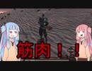 【Kenshi】世界一周を経て、ムキムキボディーになったスケル...