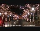 【鉄道旅行】 厳冬の北海道 鉄道旅 後編 函館山+α