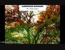 Ludovico Einaudi - RUN