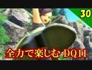【ドラクエ11】バニースーツ最高!全力で楽しむDQ11実況 Part30【PS4】