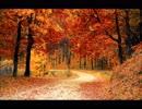 枯葉が舞い落ちる音と秋の木枯らしの音(睡眠用BGM・作業用BGM)