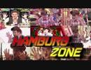 HAMBURG ZONE